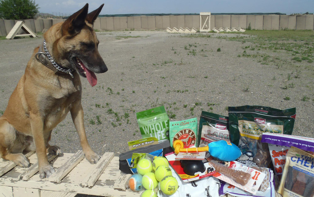 K9 Care Package